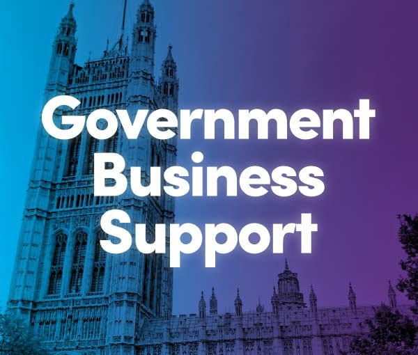 government business support